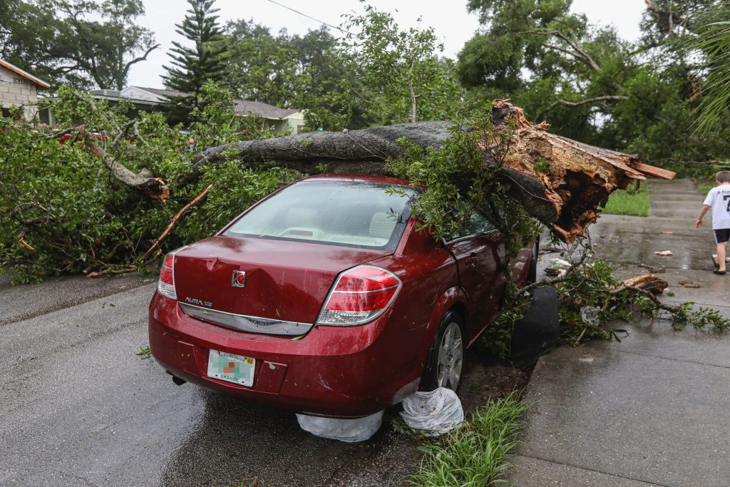 Tree fallen on red car, comprehensive coverage in Frisco